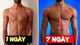 13 BÀI TẬP Gym Nam Tăng Cơ Ngực Săn Chắc Giảm Mỡ | Thể hình nam | tăng cơ giảm mỡ
