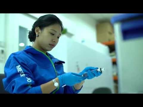 Pipette Calibration For All Brands — METTLER TOLEDO Singapore