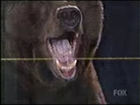 Miniatura del vídeo Kobayashi vs Giant Bear
