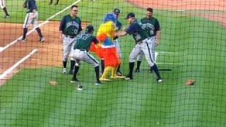 Pollo Mascota golpeada por jugadores