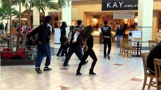 Mall Cop Tries To Interrupt Party Rock Shuffle Flash Mob