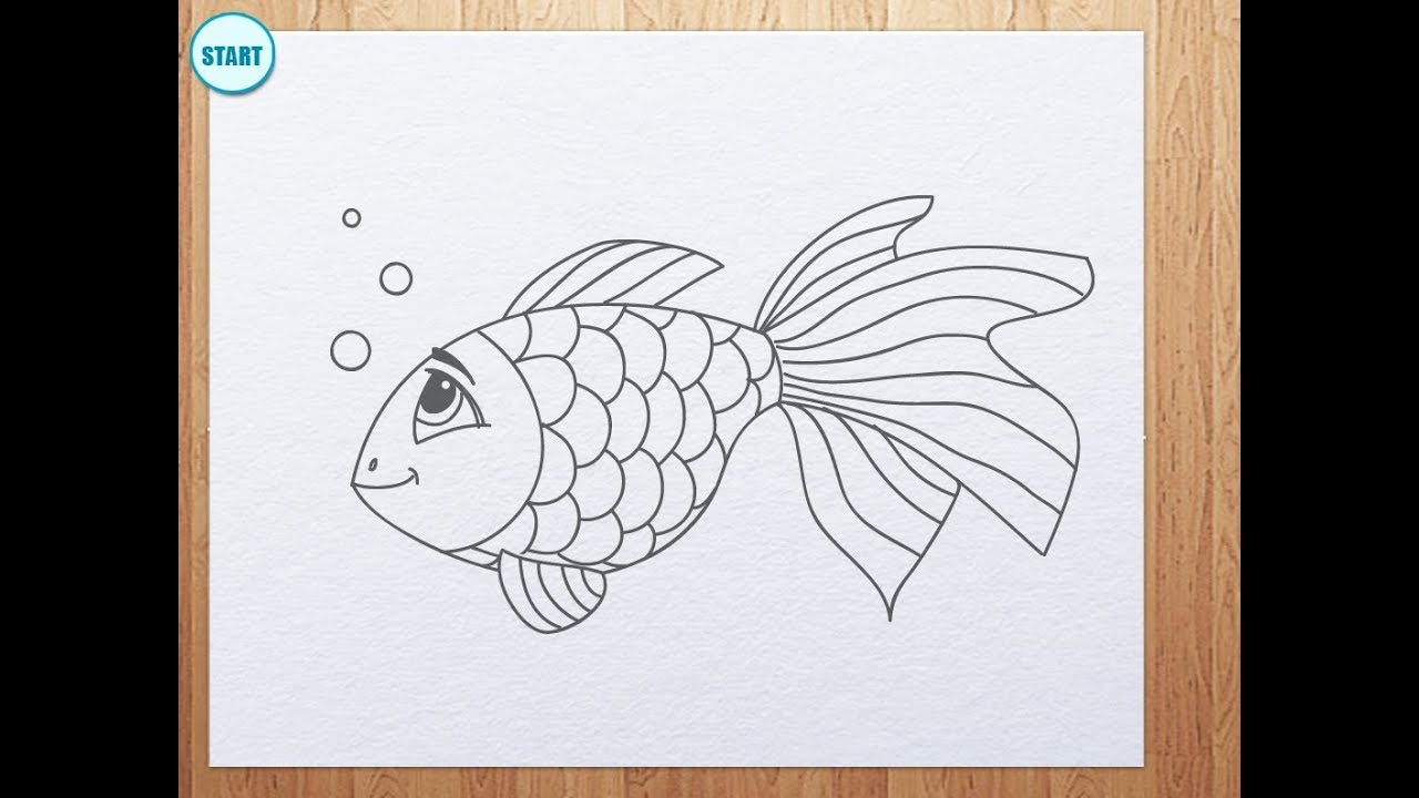 How To Draw A Fish A Koi Fish Chibi Style Youtube