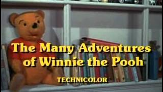 The Many Adventures Of Winnie The Pooh 06 Merry