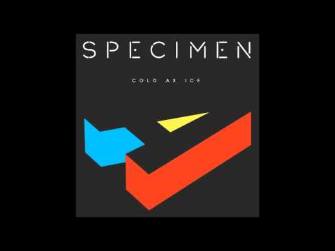 Specimen A - Cold As Ice [Free Download - Full HD Version]