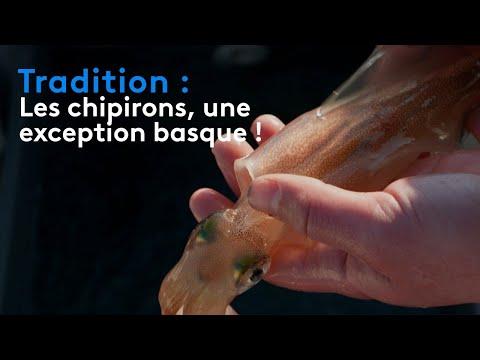 Tradition : les chipirons, une exception basque