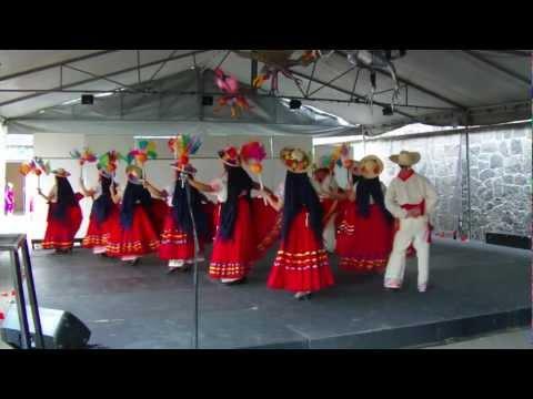 Baile de Michoacan