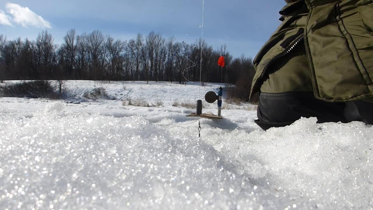 запрет на рыбалку в 2016 в ленинградской