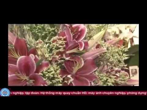 TV. Thiện Tâm - Hội Yến Diêu Trì Cung 2014 - Đại Đạo Tam Kỳ Phổ Độ - Rằm Tháng 8-Giáp Ngọ
