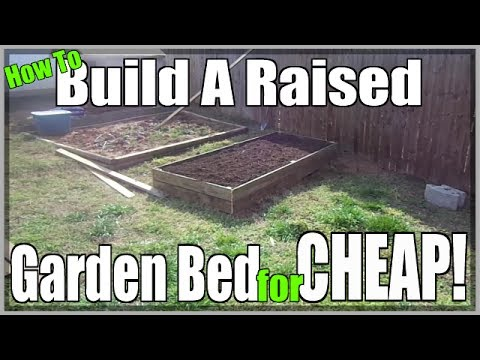 Building The Easiest Raised Garden Bed