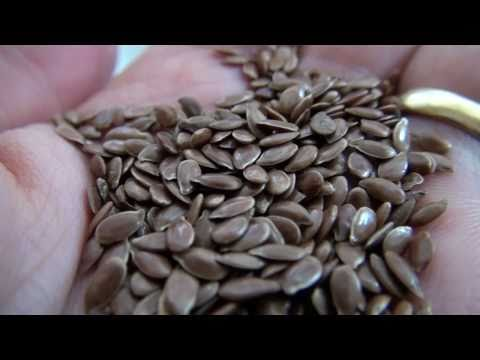 Beneficiile consumului de semințe de in