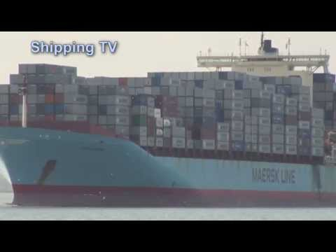 MSC Tokyo & Susan Maersk sailing from Felixstowe - 9th April 2014