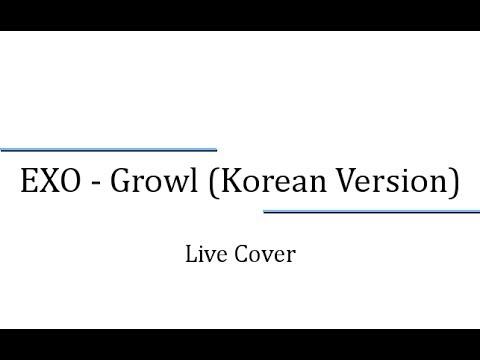 【Live Cover】 EXO - Growl (Korean Version)