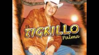 El mandilon (Audio) El Tigrillo Palma