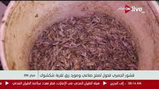 قشور الجمبري تتحول لمنتج صناعي ومورد
