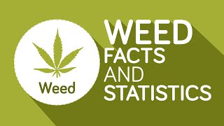 Weed: 12 Interesting Facts You Should Know