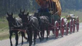My Choice Frankie Laine, Mule Train