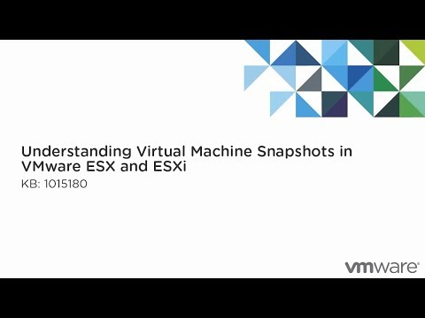 Understanding Virtual Machine Snapshots in VMware ESX and ESXi