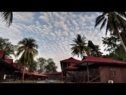 TAd Marine Resort (OFFICIAL VIDEO) Pulau Tinggi, Malaysia