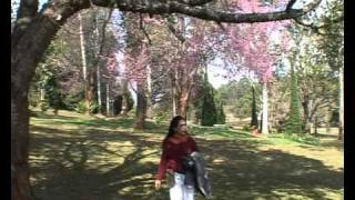 Myanmar Governor House In Pyin Oo Lwin.mp4