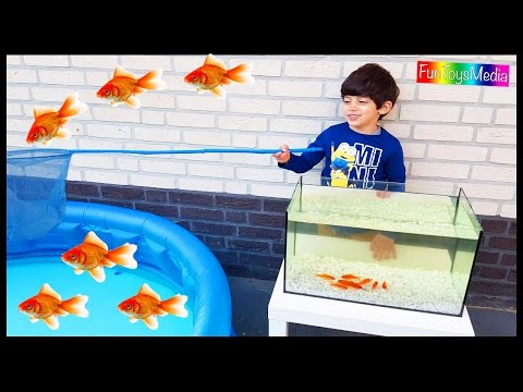 Catching Fish Fun Kids Playing Activity