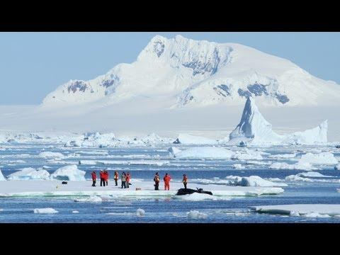 南極半島クルーズ 白い大自然 実体験の人気上昇