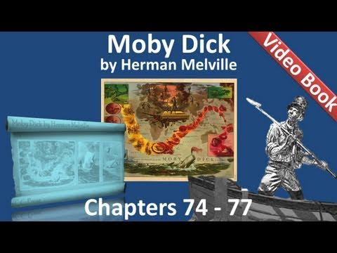 Chapter 074-077 - Moby Dick by Herman Melville