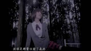 張韶涵 - 親愛的那不是愛情 (官方版MV) YouTube 影片