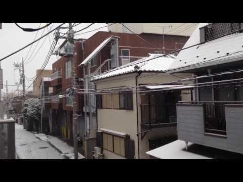 Heavy Snow Falls in Tokyo - Today February 8, 2014