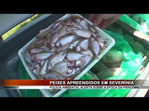 04/02/2019 - Operação da Polícia Ambiental apreende mais de 100 kg de peixes em Severínia