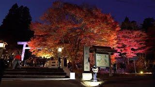 """منطقة """"أورابانداي"""" اليابانية تكشف ألوانها"""