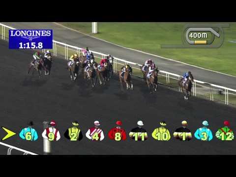 Vidéo de la course PMU DUBAL HIGH PURITY INGOR TROPHY