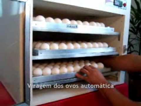 Chocadeira 240 ovos