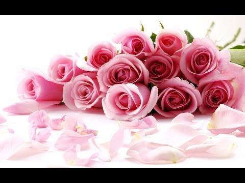 Kata Kata BIJAK Kehidupan 2014 kata kata bijak kehidupan Mutiara Islam Motivasi cinta Terbaru
