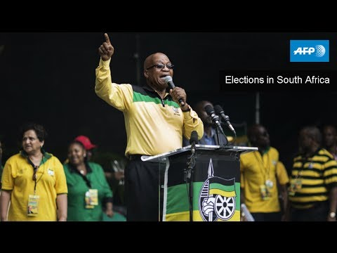 AFP Live - Elections in South Africa - May 7, 05:00 GMT