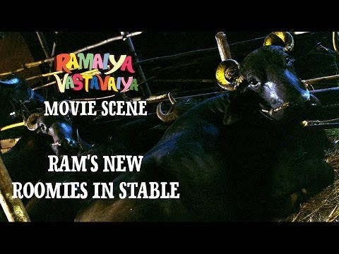 Ram's New Roomies in Stable - Ramaiya Vastavaiya Scene - Girish Kumar