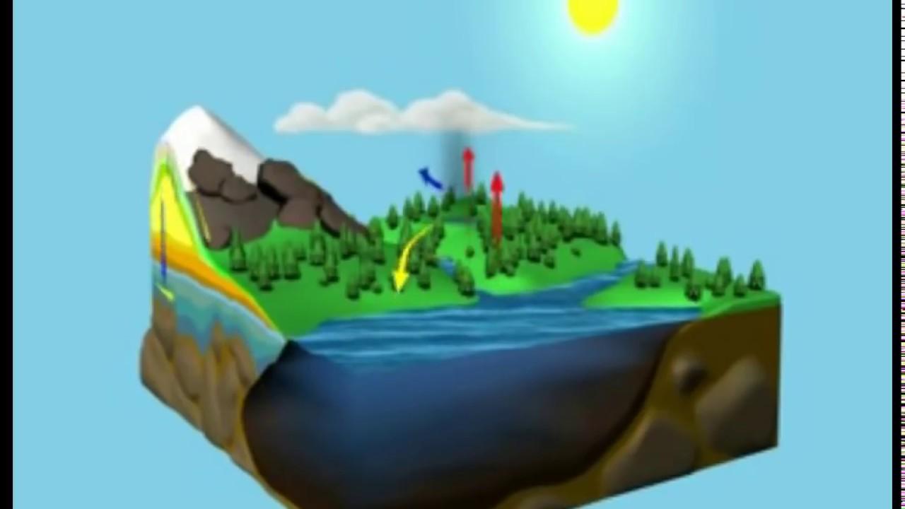El Ciclo Del Agua Animado Y Comentado Youtube