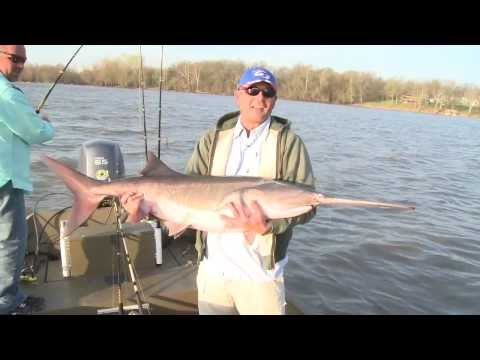 G3 Sportsman TV - Paddlefish Snagging