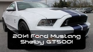 2014 Mustang Shelby GT500
