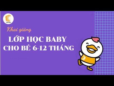 VGD Shichida - Lớp học baby cho bé 6-12 tháng