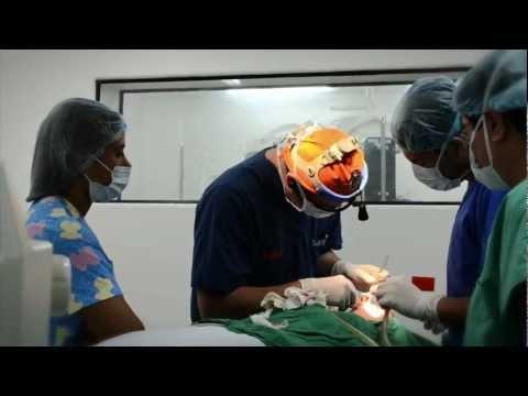 Dr. Luis Bitar - Rinoplastia - Cirugía de Nariz