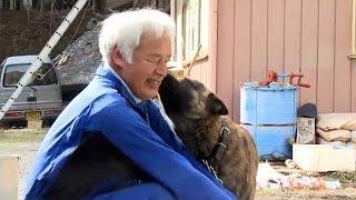 فوكوشيما: مواطن ياباني تحدى المخاطر النووية للإعتناء بالحيوانات |