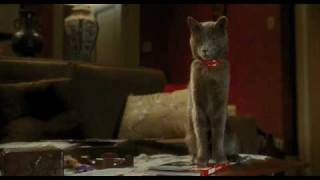 Cats & Dogs: Revenge Of Kitty Galore Official Trailer