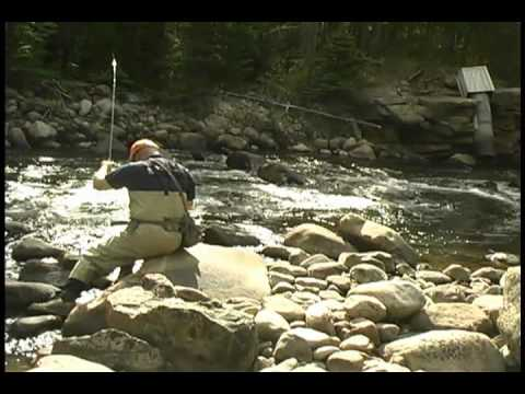 Making a Backcast with Utah Fly Guides