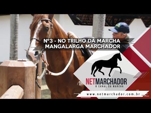 #3 - NO TRILHO DA MARCHA - NET MARCHADOR - O CANAL DA MARCHA 11/09/2017