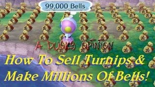 3ds Animal Crossing: How To Sell Turnips & Make Millions