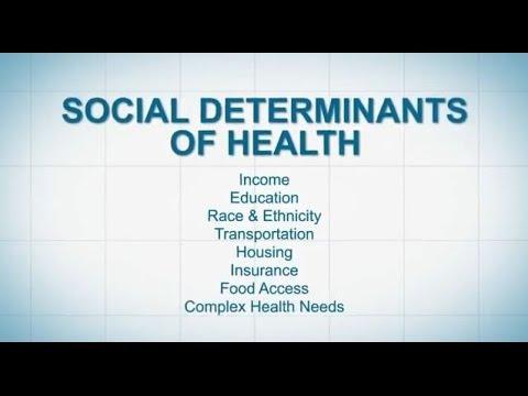 Socioeconomic determinants of health essay