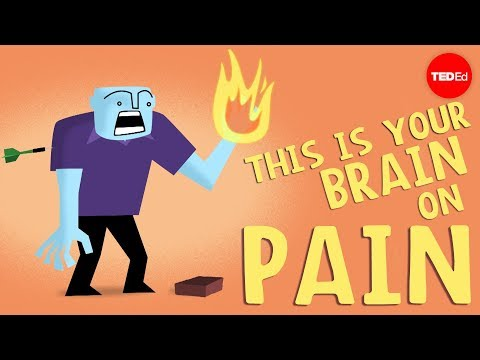 How does your brain respond to pain? - Karen D. Davis