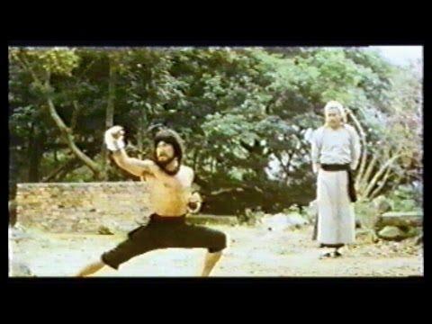 El Rey del Kung Fu (Leung Kar-Yan)