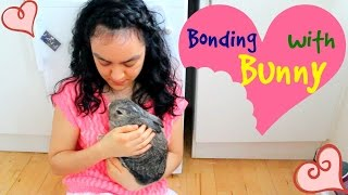 8 Tips on How to Bond with your Bunny
