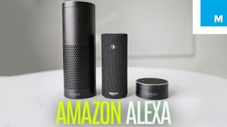 Amazon Echo, Dot & Tap: Which Alexa Device is for You? | Plugged In